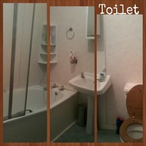 Toilet Abz
